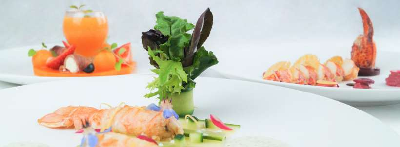 Cuisine innovante : exemple de plats composé de homard